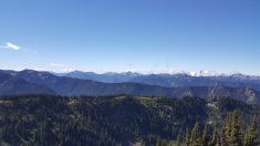 The Olympic Mountains as seen from the Obstruction Point hiking trail.